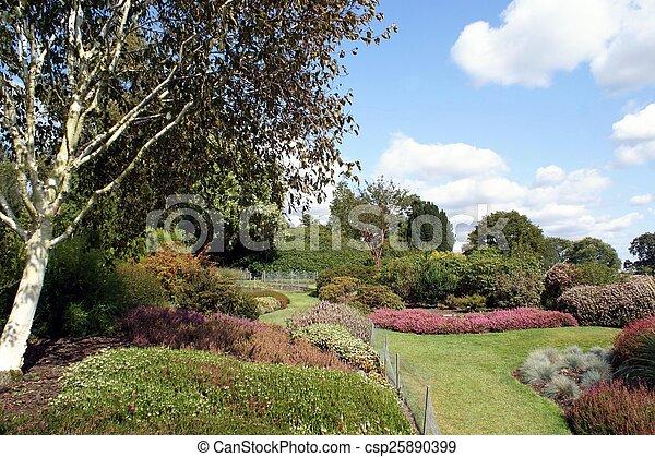 jardin - csp25890399