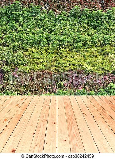 Jardin Vertical Plancher Mur Bois Vert