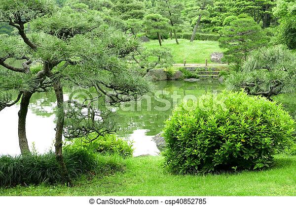 jardin zen plantes formidable quelles plantes pour jardin zen amnagement paysager cheveux dange. Black Bedroom Furniture Sets. Home Design Ideas