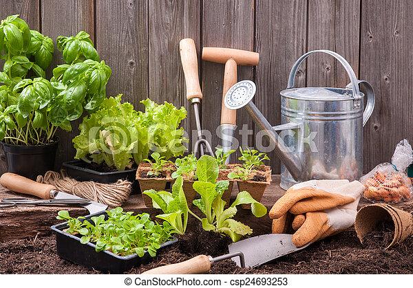 jardinage - csp24693253