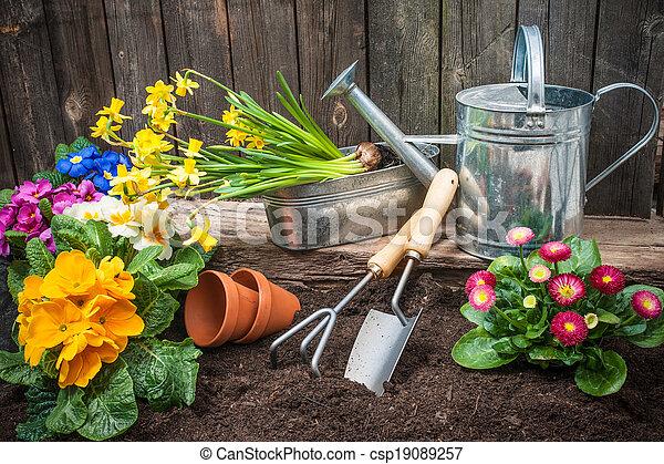 jardinagem - csp19089257