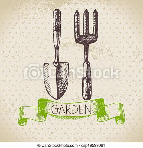 jardinagem, esboço, desenho, experiência., vindima, mão, desenhado - csp19599061