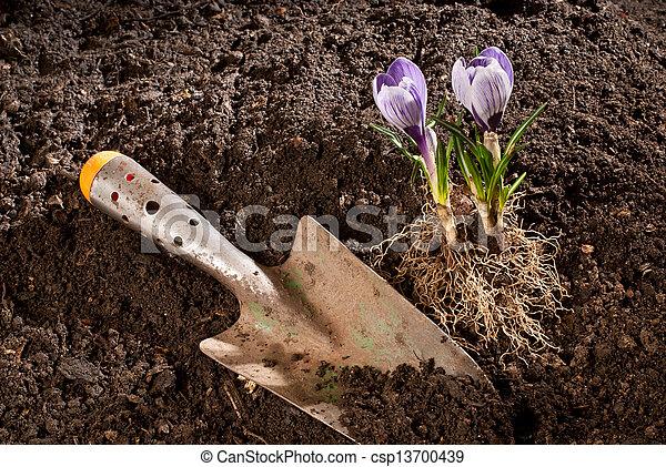 Jardinería - csp13700439