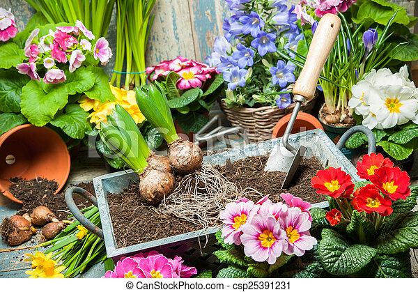 Jardinería - csp25391231