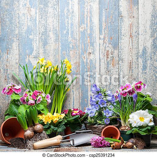 Jardinería - csp25391234