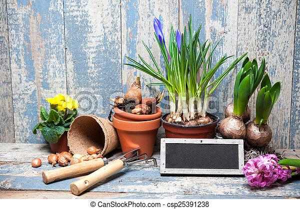 Jardinería - csp25391238