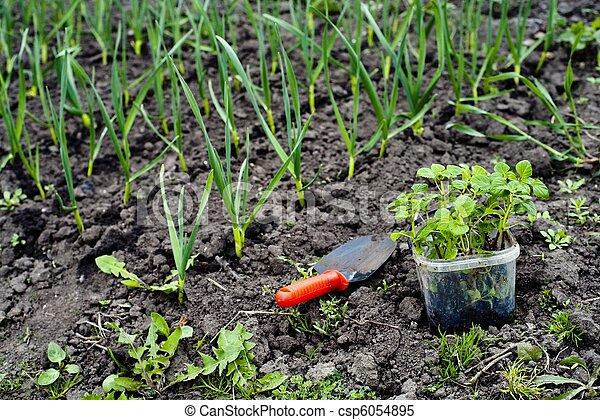 Jardinería - csp6054895