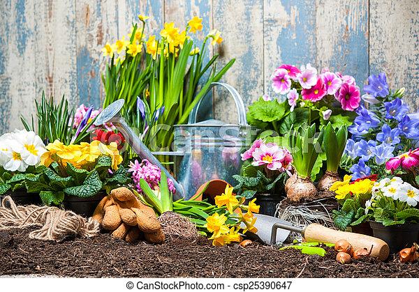 Jardinería - csp25390647