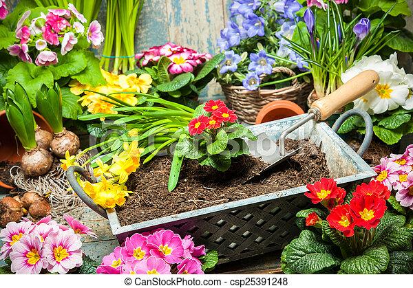 Jardinería - csp25391248