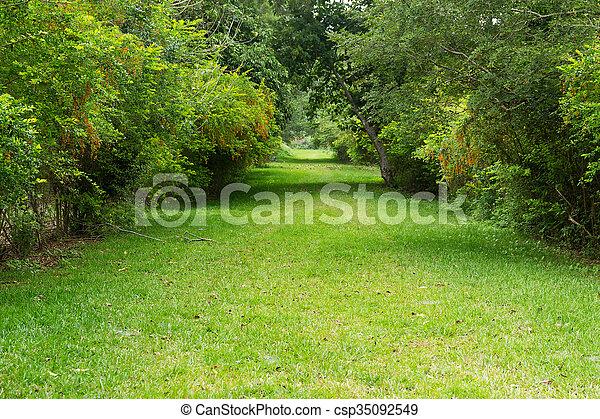 Jardinería - csp35092549