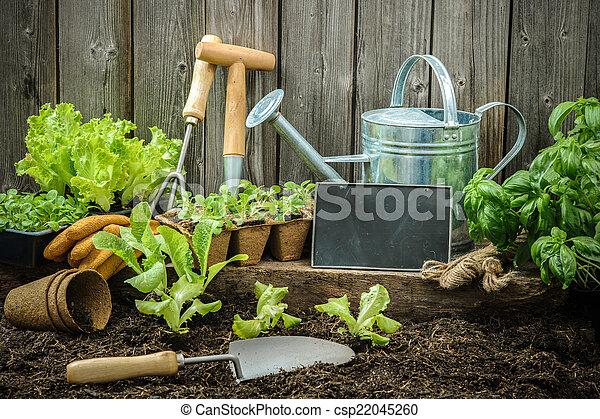 Jardinería - csp22045260