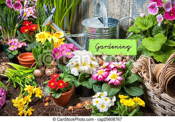 Jardinería - csp25608767