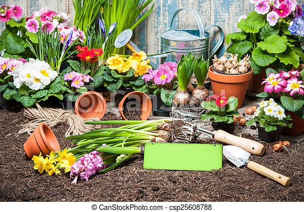 Jardinería - csp25608788
