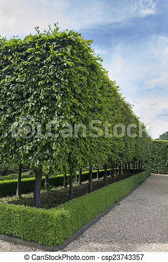 jardins, formal - csp23743357