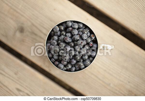 Un lodo lleno de bilberry - csp50709830