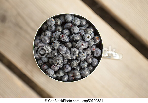 Un lodo lleno de bilberry - csp50709831