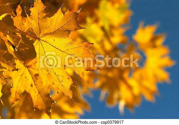 jaune, 2, branche - csp0379917