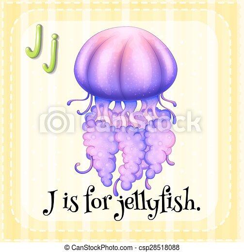 Jellyfish - csp28518088