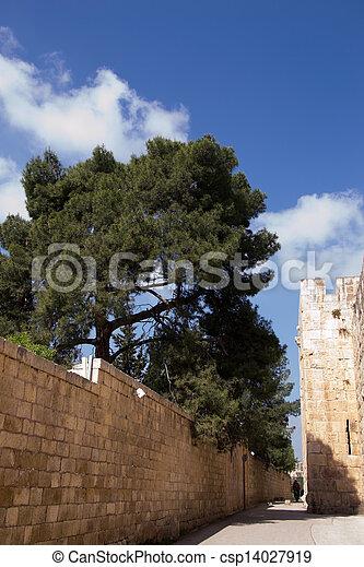 Jerusalem, inside the Old City - csp14027919