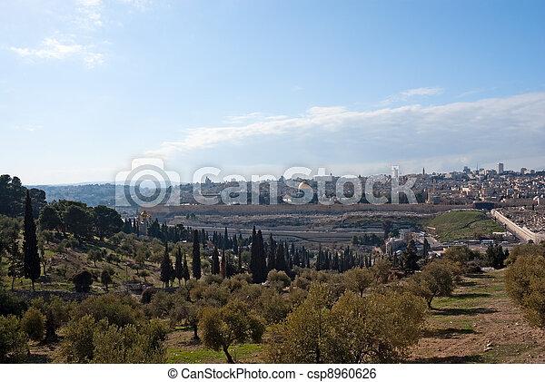 Jerusalem old city - csp8960626