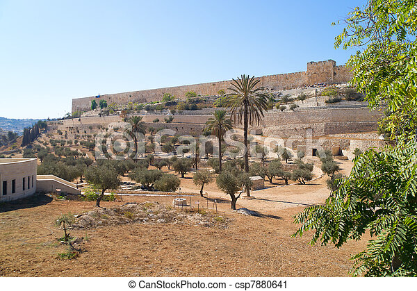 Jerusalem Old city, view from Mount of Olives - csp7880641