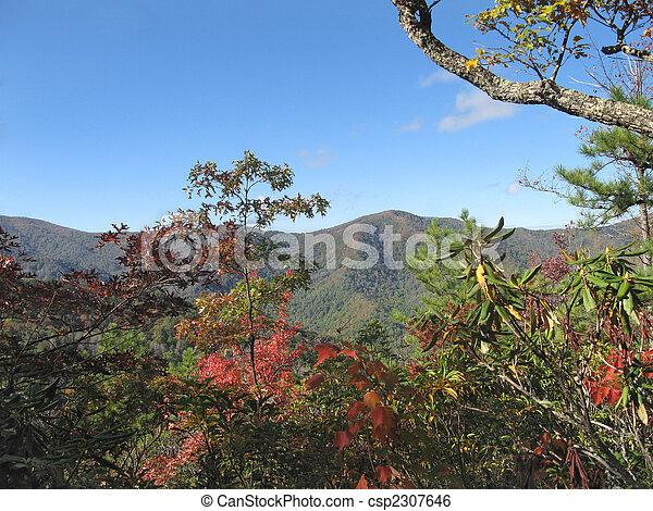 jesień, góry, dymny - csp2307646
