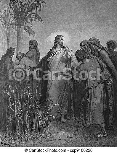Jesus and the Pharisees - csp9180228