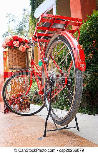 jezdit na kole, vinobraní - csp20266879