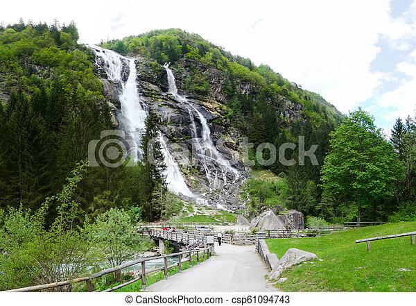 jodła, górska droga, -, drzewa, krajobraz, wodospad, las, góry - csp61094743