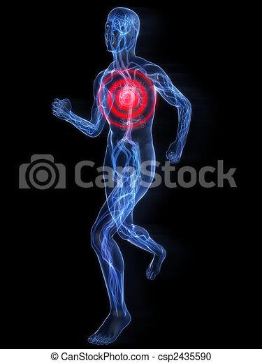 jogger, -, systém, cévní - csp2435590