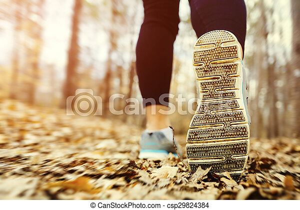 jogging, kobieta, zachód słońca, las - csp29824384