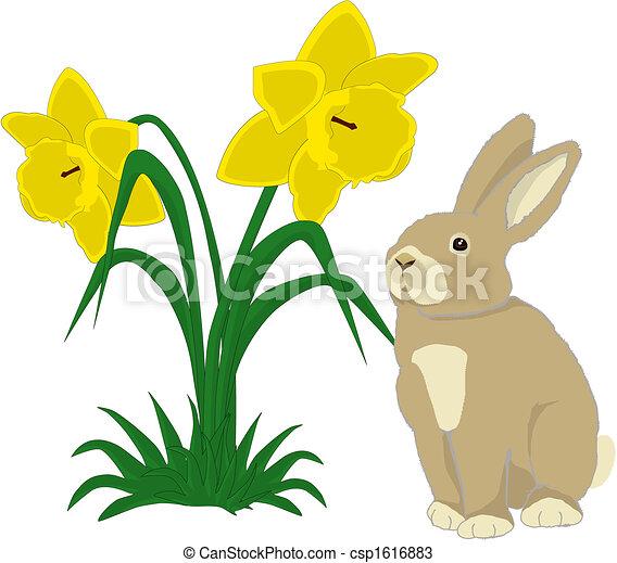 Jonquilles lapin mignon deux illustration jonquilles - Dessin jonquille fleur ...