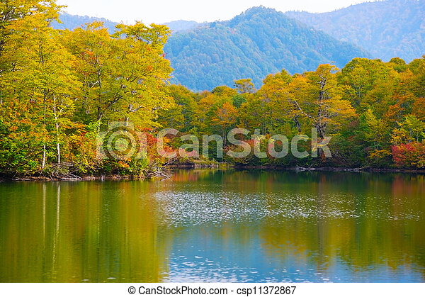 joshinetsu, 國家, kamaike, kogen, 公園, japan., 池塘 - csp11372867