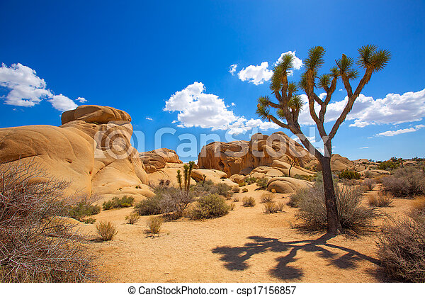 Joshua Tree National Park Jumbo rock en Yucca Valley Mohave Desert California USA - csp17156857