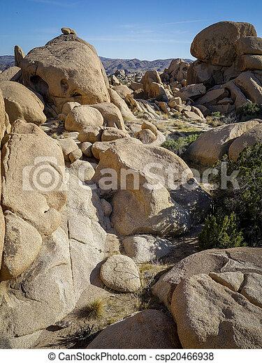 Joshua Tree National Park, USA - csp20466938