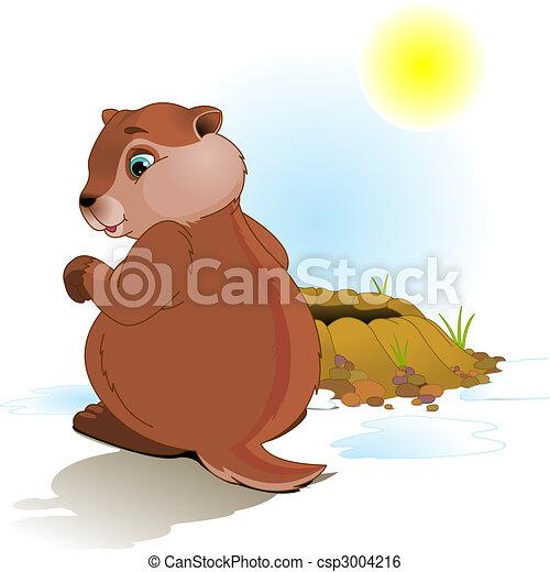 jour, marmotte amérique - csp3004216