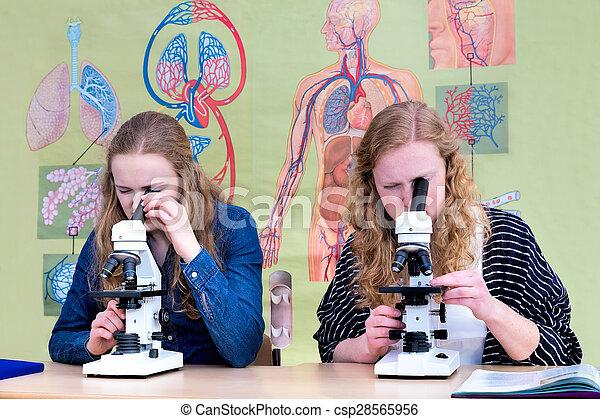Jugendliche mädchen zwei schauen mikroskop durch niederländisch
