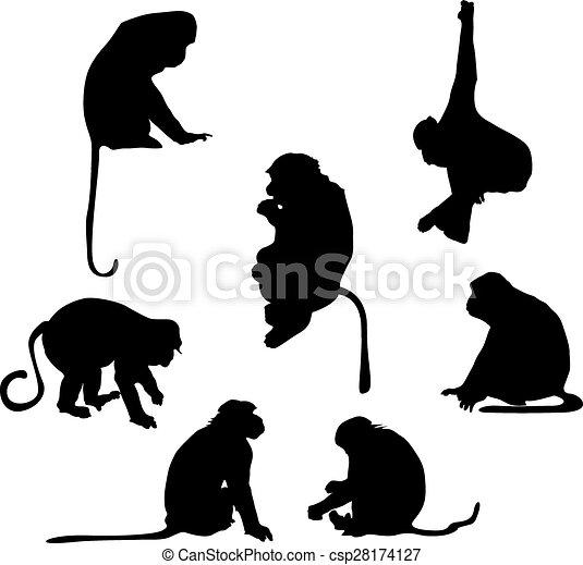 Siluetas de mono juguetón - csp28174127