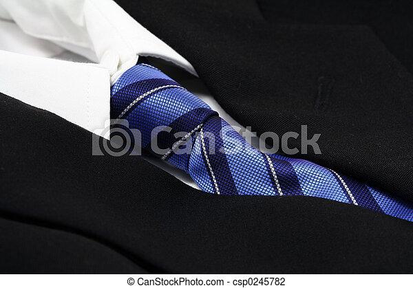 Traje de negocios - csp0245782