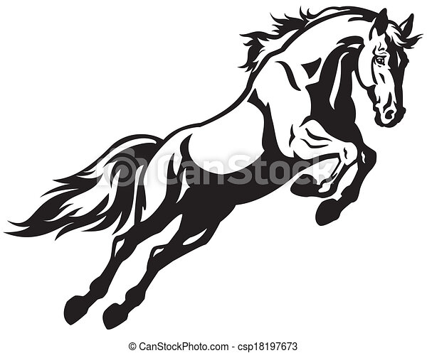 Jumping Horse Black And White Illustration