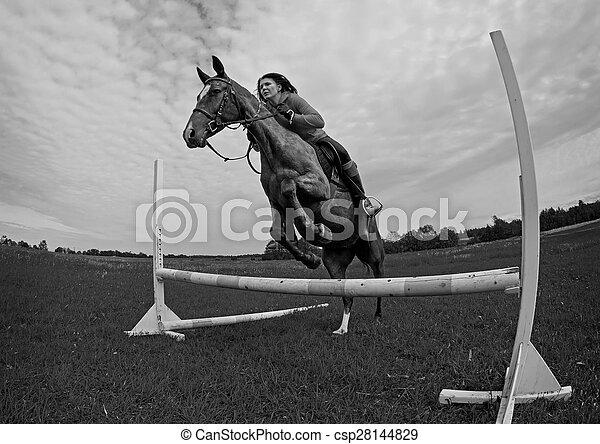 Jumping horse - csp28144829