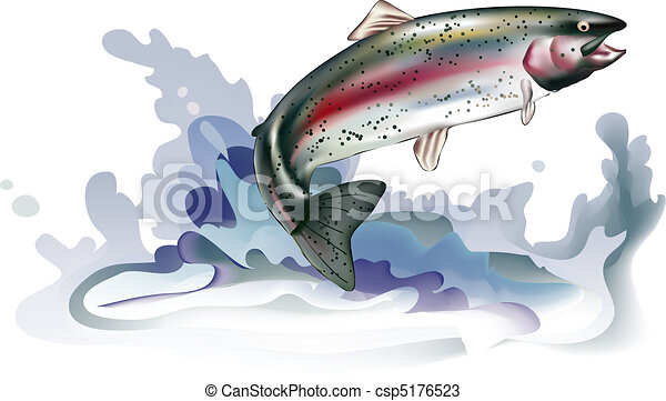 Jumping trout - csp5176523