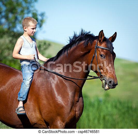 junge pferd gro bucht field kind reiten outdoors junge pferd gro bucht summertime. Black Bedroom Furniture Sets. Home Design Ideas