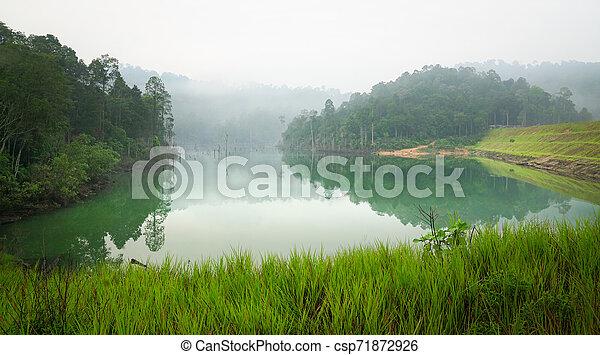 Jungle and lake landscape - csp71872926