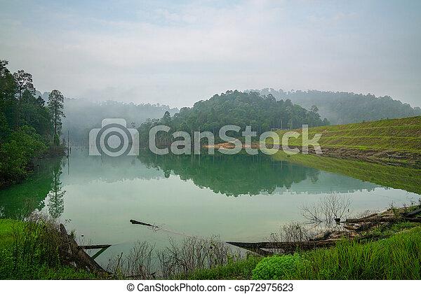 Jungle and lake landscape - csp72975623