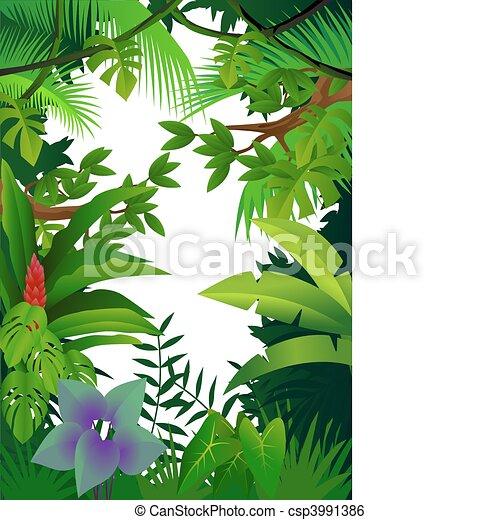 Jungle background - csp3991386