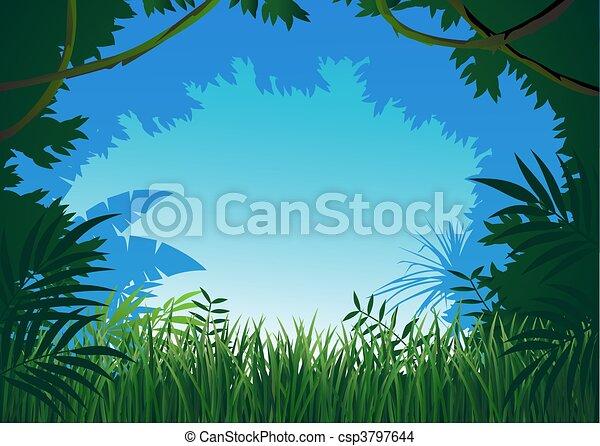 Jungle background - csp3797644