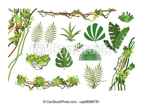 Jungle vine. Cartoon rainforest leaves and liana overgrown plants. Isolated vector set - csp68086781