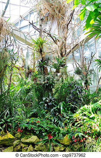 garten frankfurt, jungles in palmen garten, frankfurt am main, hessen, germany., Design ideen
