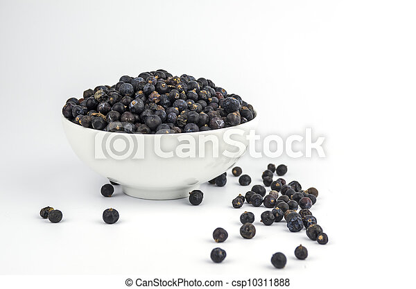 Juniper berries in a white bowl on white background - csp10311888